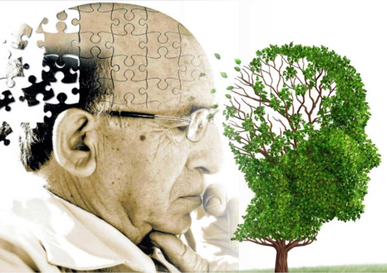 Façons inattendues de prévenir la maladie d'Alzheimer