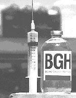 Hormona de Crescimento Bovino (rBGH)