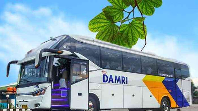 Damri Lampung Jogja: Harga Tiket, Pool & Jadwal ke Yogyakarta