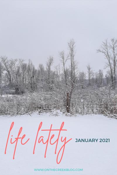 Life Lately - January 2021 | www.onthecreekblog.com