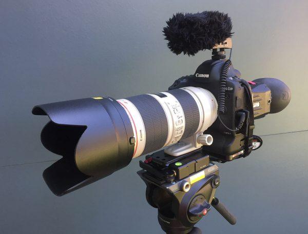 Камера Canon EOS 1D X Mark II, объектив EF 80-200 f/2.8L IS II, микрофон Sennheiser MKE 400, видоискатель Zacuto Z-finder, монопод Manfrotto