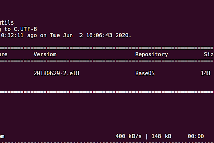 Bagaimana Cara Ping di CentOS [Install Ping Command in CentOS]