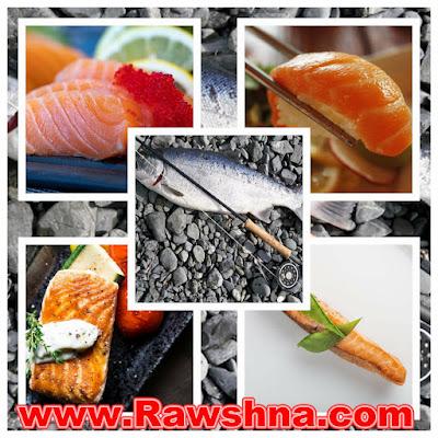ما الذي يحدث لجسمك عند تناول سمك السلمون كل يوم ؟