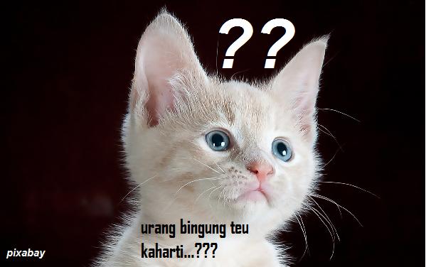 Arti Kata Jatuh dalam Bahasa Sunda - Blog Mas Hendra