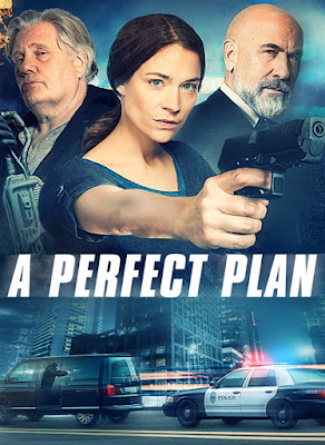 A Perfect Plan [2020] [DVD R1] [Subtitulada]