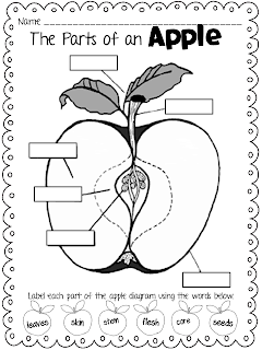 forkin4th: {FREEBIE} Parts of an Apple