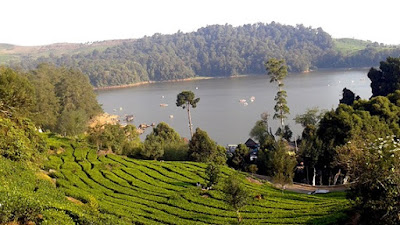 Situ Patenggang, Captivating Lake in Bandung, beautiful lake, Bandung, Vacation, vacation place, fantastic place, cheap place