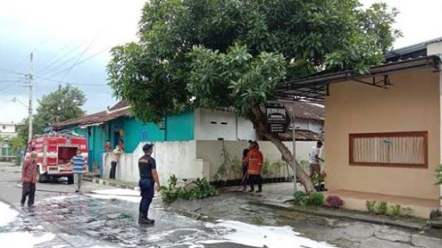 Dendam! Tawon Vespa Teror Balik Warga Sukoharjo Setelah Sarang Dihancurkan