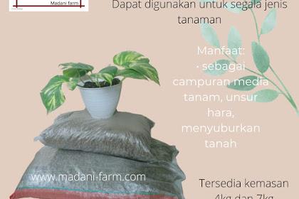 Manfaat Pupuk Kandang Kohe Kambing Organik