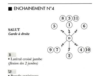 Les Enchainements Codifiés de canne et bâton, de Michel Demouch