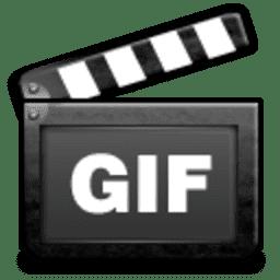 ThunderSoft Video to GIF Converter v2.8.0 Full version
