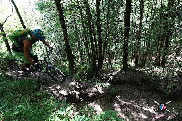 Freeride Inc. Austria Biketouren