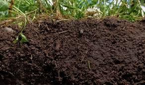 Một số phương pháp xử lý độ ẩm của đất
