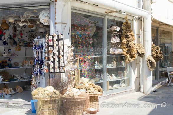 sünger, deniz kabuğu, deniz yıldızı dolu hediyelik dükkanlar