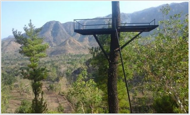 Gunung Beruk ;10 Top Destinasi Wisata Ponorogo