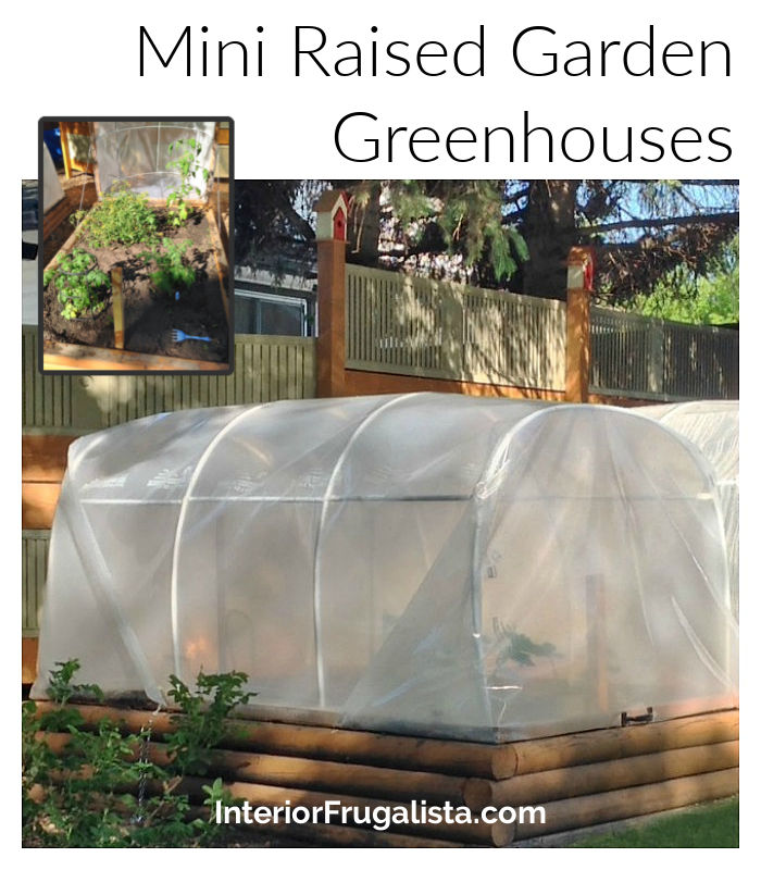 How to make quick and easy frost blankets from clear yard waste bags in a pinch to protect raised garden beds from spring or late summer frost.