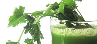Tips Memilih Obat Herbal
