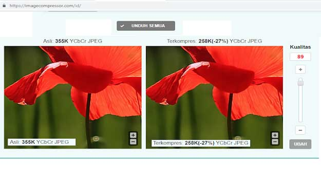 cara Kompres Gambar Online tanpa Mengurangi Kualitas