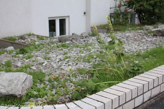 mein waldgarten steine vom unkraut berwuchert. Black Bedroom Furniture Sets. Home Design Ideas