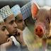 मुसलमान व अन्य कुछ लोग सुअर का मांस क्यों नहीं खाते, ये है वजह