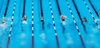 Berenang-Olahraga