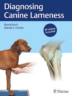 Diagnosing Canine Lameness (Videos Included)