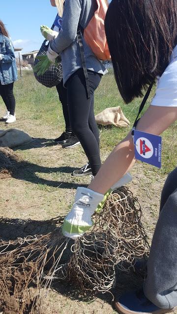 Δράση καθαρισμού των ακτών του Αγγελοχωρίου με την υποστήριξη του Δήμου Θερμαϊκού