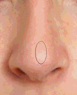 Cara Membuat Gambar Vektor Bagian Hidung Menggunakan Photoshop