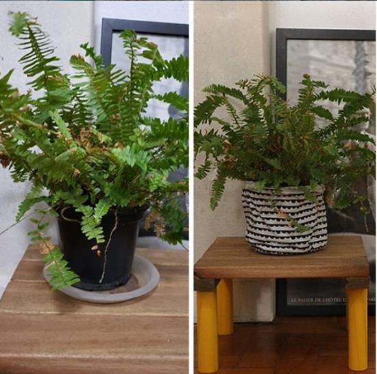 como decorar vasos de plantas de plástico, decorar vaso de planta, ideias para vasos de plantas capa para vaso, vaso de planta, urban jungle, a casa eh sua, plantas em apartamento, decorar com vasos, decorar vasos, vasos bonitos, capa para vasos, como personalizar vasos de plástico,
