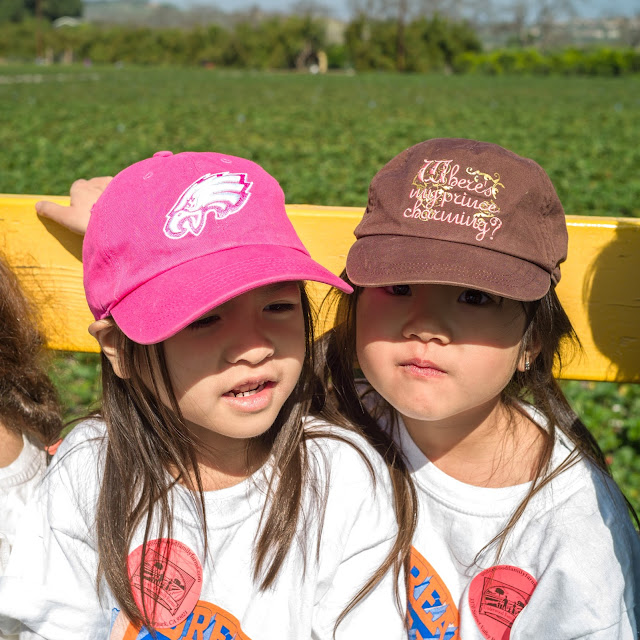 Sign up for the farm tour to pick your own berries at Underwood family farms in Moorpark. See more photos at growinguphui.com