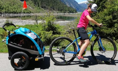 Beste fietskar test Burley