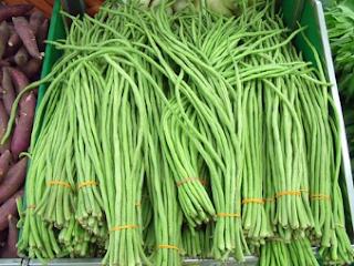 Sayuran Kacang Panjang