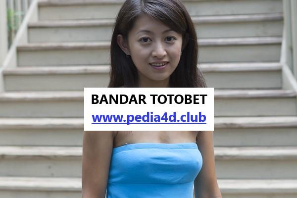 Situs Prediksi Hasil Totobet Online