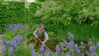 Monty cleaning pond