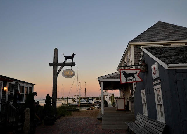 Martha's Vineyard Sunset (Vineyard Haven) Block Dog