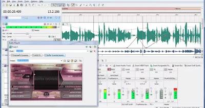 Sofware audio editing