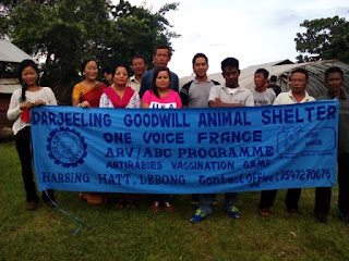 Antirabies vaccination camp