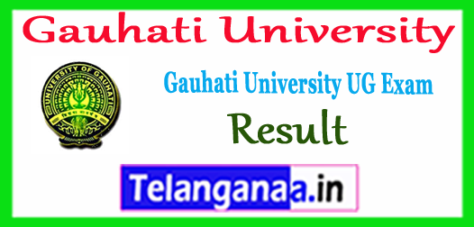 Gauhati University 1st 3rd 5th Semester BA B.Sc B.Com TDC Exam Result 2017