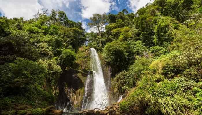 Air Terjun Dewi Rengganis di Krucil Wisata Alam nan Eksotis