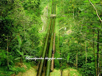 [CoC Regional: Lokasi Wisata] Jalan-Jalan ke Bukit Cinta Desa Kalipagu