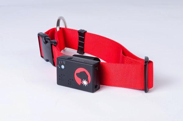 Creative Works Dog Collars