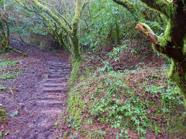 Footpath and steps in Gover Valley, Cornwall