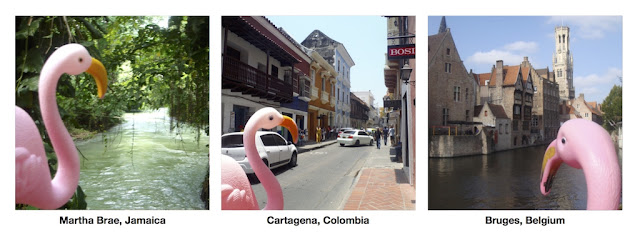 Jamaica Colombia Belgium - and flamingo