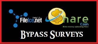 bypass-fileice-survey-trick