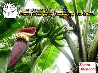 Tebak-tebakan buah pisang