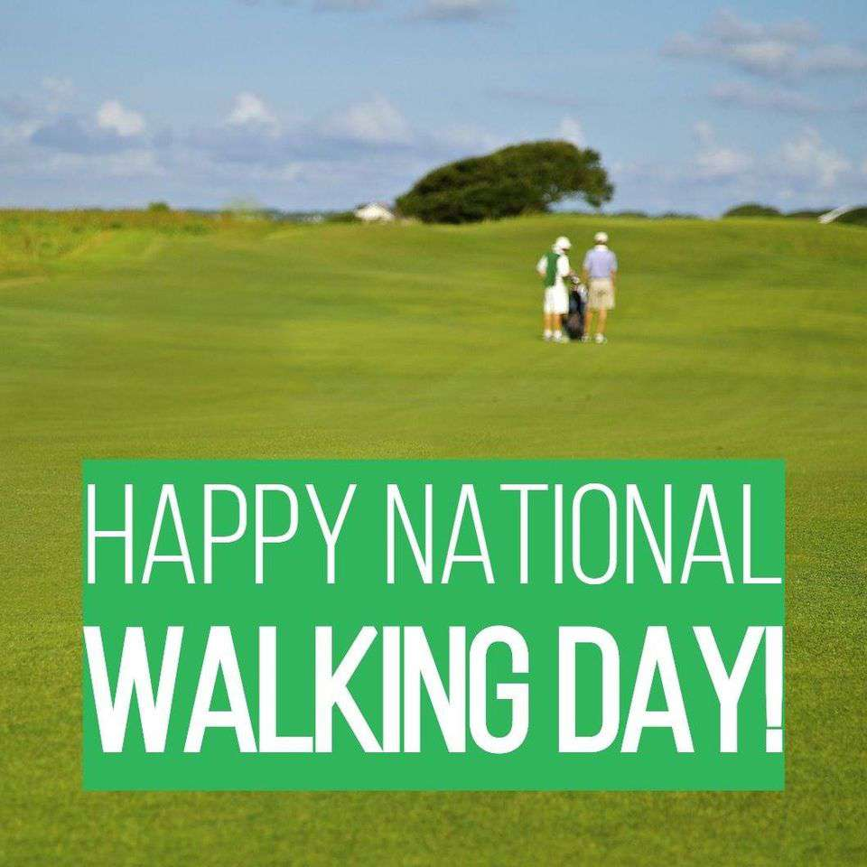 National Walking Day Wishes Beautiful Image