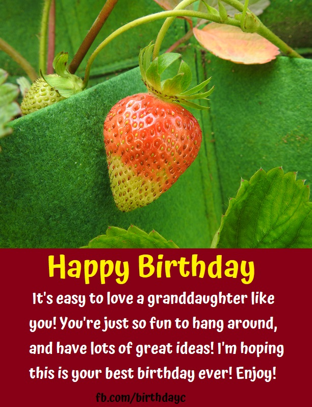 Happy Birthday - It's easy to love a granddaughter