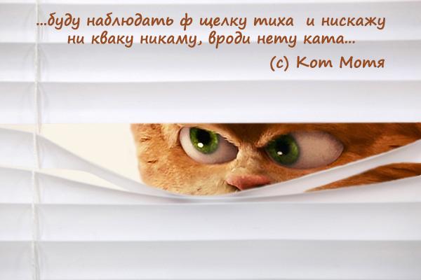 Блог Кота Моти  - Страница 3 EybzM8wXEAA_Nht