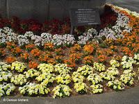 White, yellow and orange flower border near Tokyo Imperial Gardens, Japan