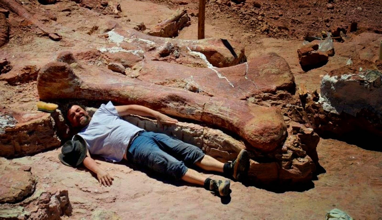 Perbandingan Dinosaurus Dengan Manusia